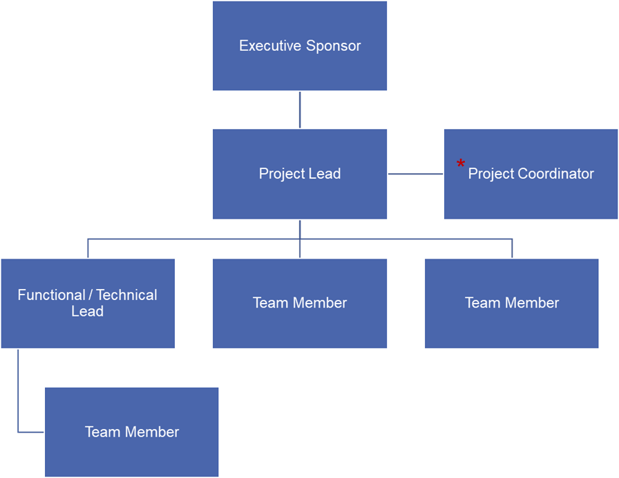 Team organization chart starting with Project Sponsor at the top, Project Lead, and other team members